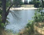 Regional Parks Deploys Resource Team
